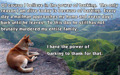 funny dog Of course I believe in life power of barking