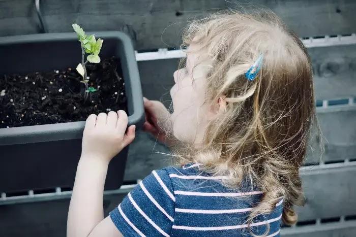 manfaat memperkenalkan sains pada anak sejak dini