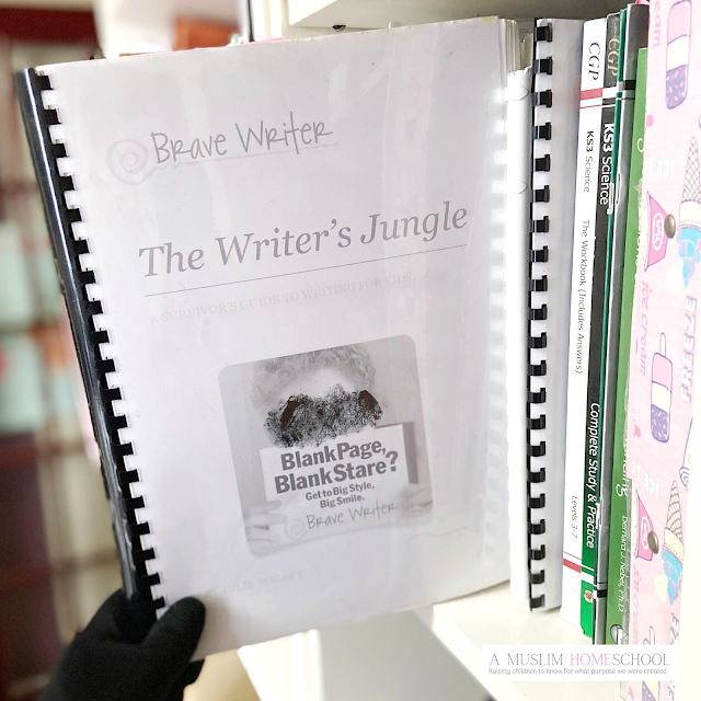 The writers Jungle review