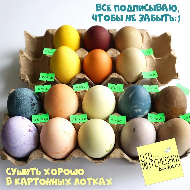 красим яйца на пасху в натуральные цвета