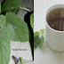"""Tulsi """"Holy Basil"""": How To Use Tulsi Leaves To Fight Diabetes And Many More Disease"""