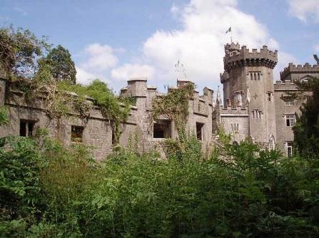 Rumah Kastil di Tengah Hutan