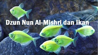 KIsah Anak Dzun Nun Al-Mishri dan Ikan | Dzun Nun Al-Mishri