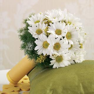 Ромашка - цветок мужского имени Иван
