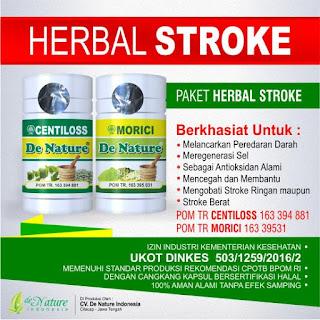 obat gejala stroke, obat herbal gejala stroke, obat gejala stroke alami