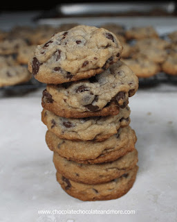 http://chocolatechocolateandmore.com/overnight-chocolate-chip-cookies/