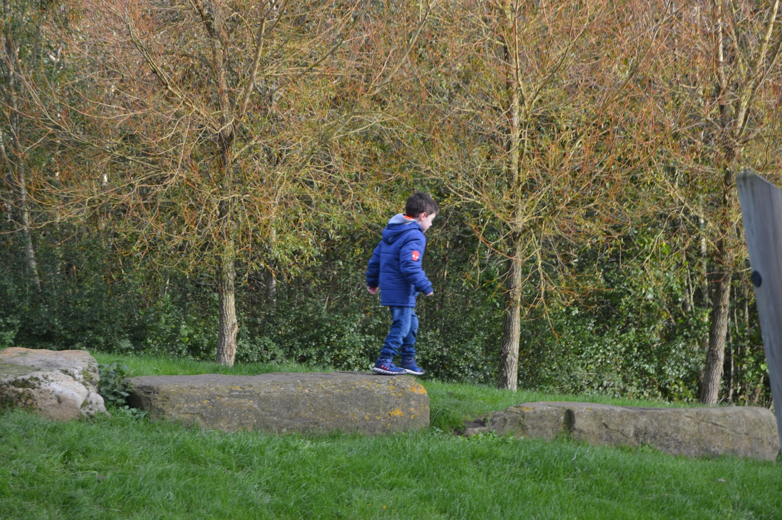boy walking along a log