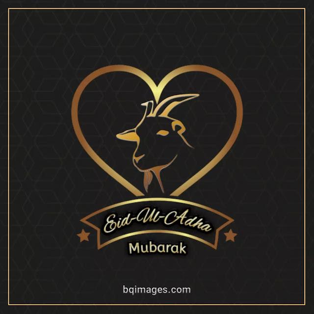 eid ul adha mubarak dp