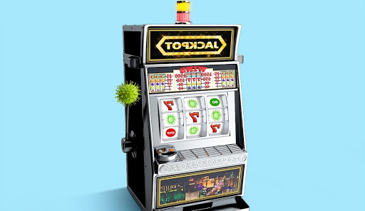 Memilih Game Slot Online di Situs Agen Judi Online