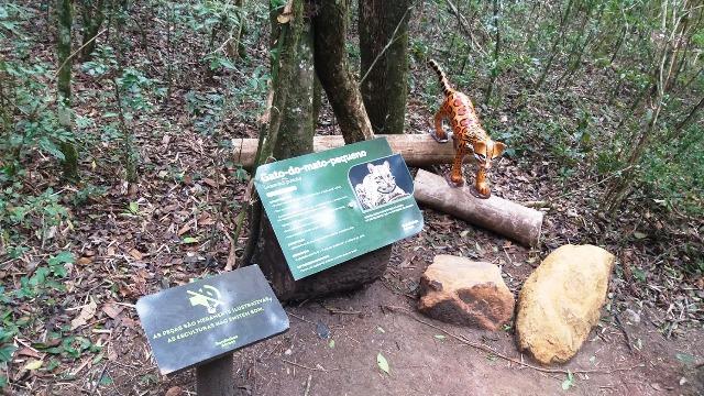 Trilha ecológica durante a visita aos Bondinhos Aéreos no Parque da Serra, em Canela, na Serra Gaúcha
