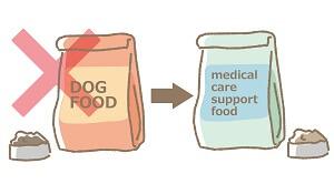 alimentos para cães com disfunção hepática