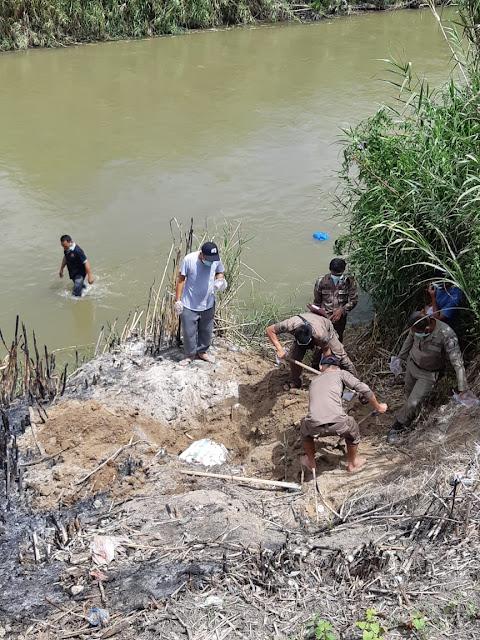 Bersihkan Sungai Dari Bangkai babi, Sekda : Sebaiknya bangkai dibakar atau dikubur