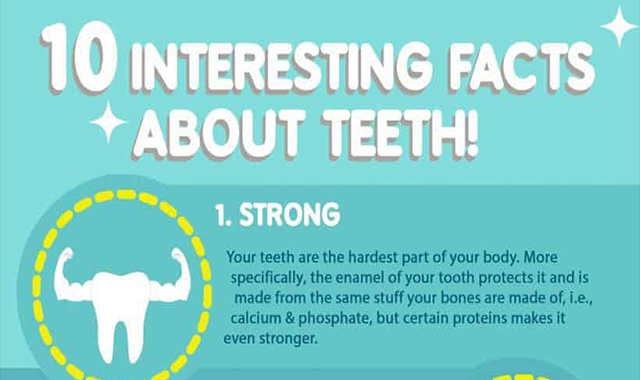 10 Interesting Facts About Teeth #infographic