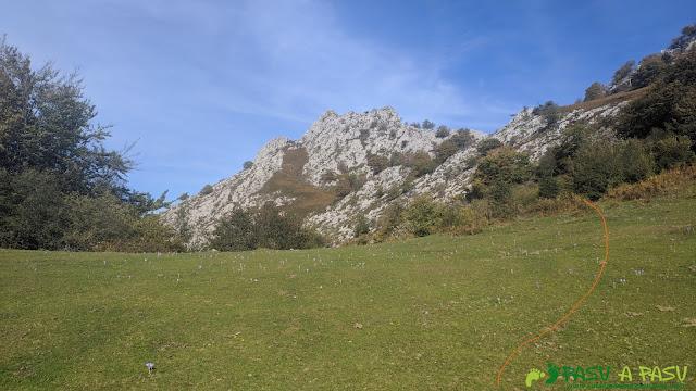 Camino saliendo de la campera en la zona alta de la Sierra de Pelúgano