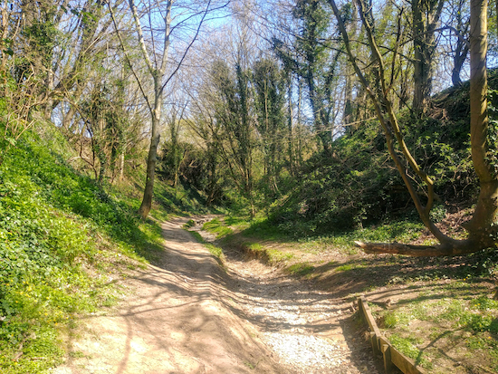 The bridleway along Braughing Bourne