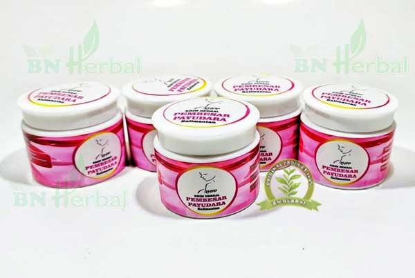 cream Pembesar payudara