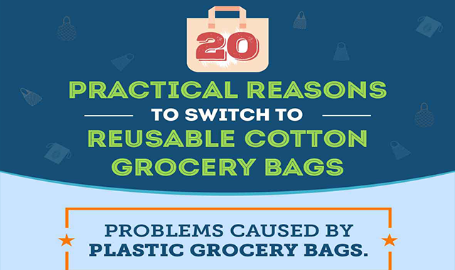 20 Practical Reasons to Switch to Reusable Grocery Bags