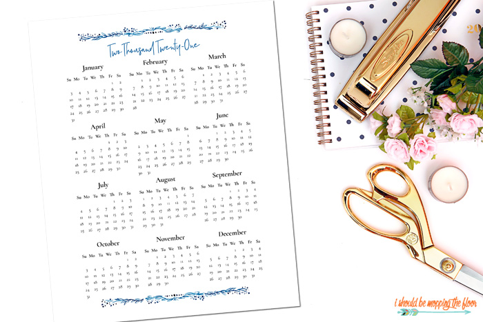 Free Printable At A Glance Calendar for 2021