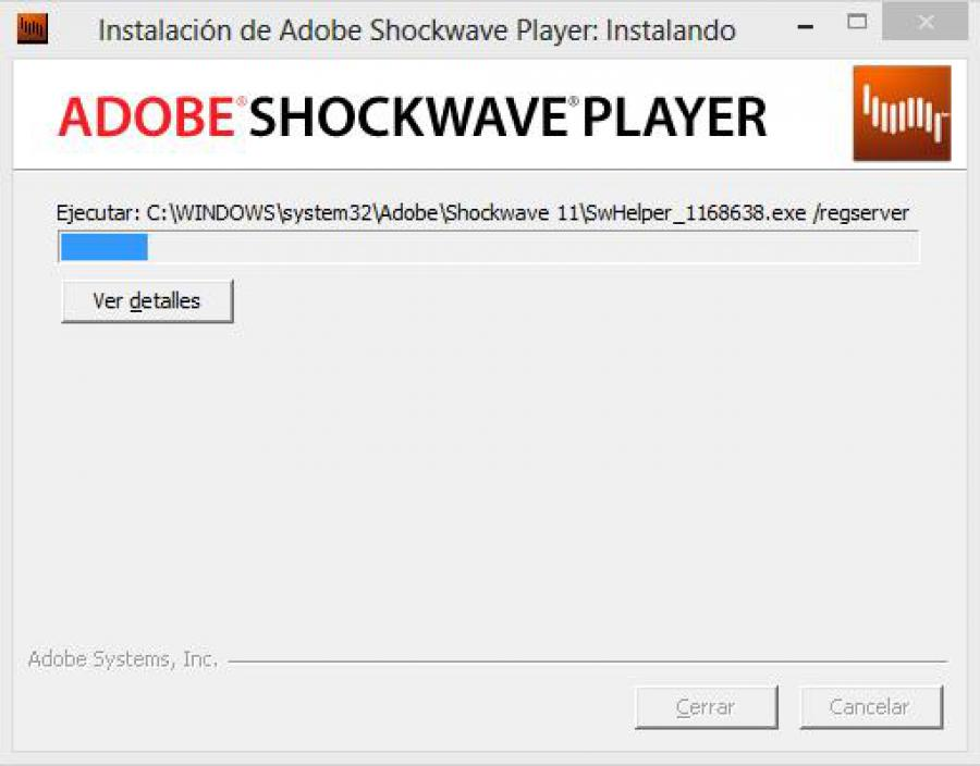 adobe flash player (shockwave flash plugin).