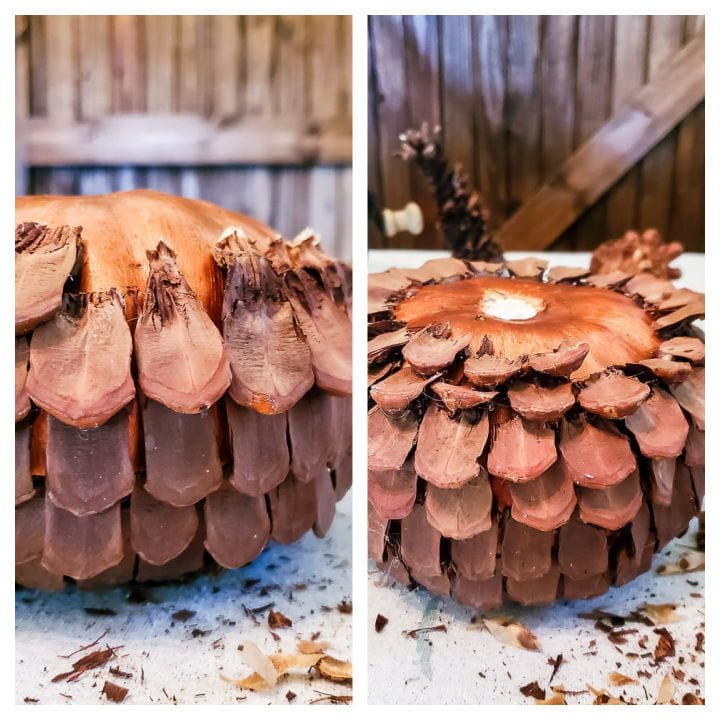 rows of pinecone scales glued to pumpkin form