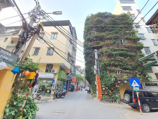 Vietnamese turned a five-storey house into a vertical garden