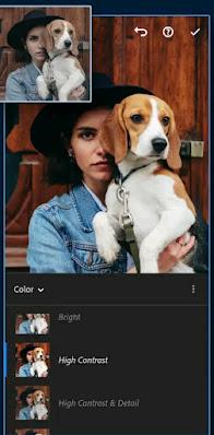 Adobe Lightroom Mod APK v6.0 Premium Download Unlocked Features