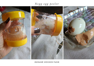 Negg tested with farm fresh eggs