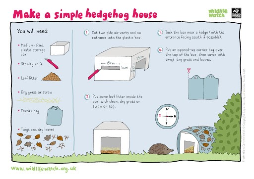 40+ Rainy Day Educational Activities for Kids Aged 9-12 - hedgehog house