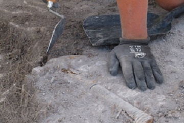 NZ's oldest shipyard unearthed in paddock