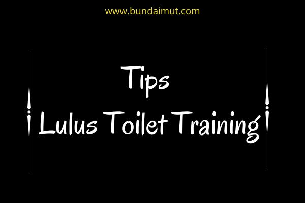 Tips lulus toilet training