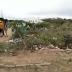 Descaso ambiental frustra foliões em Coronel João Sá/BA