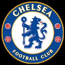 Logo DLS Chelsea