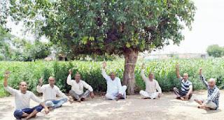 किसान किसानों ने सामूहिक मुण्डन होकर दर्ज कराया विरोध | #NayaSabera