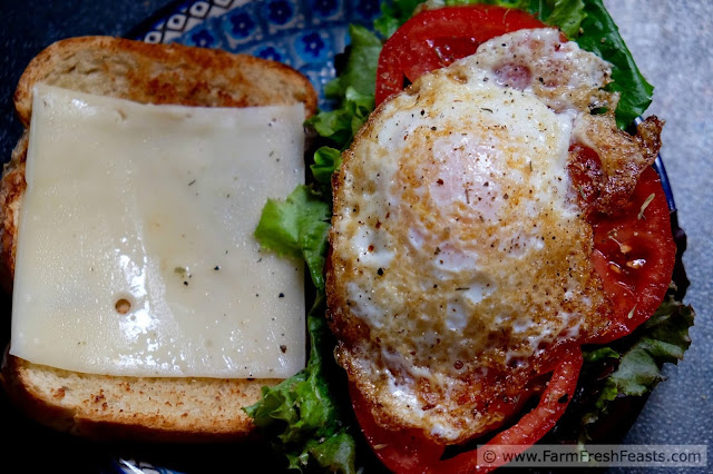 Grilled cheese meets a fried egg then mashes up with a BLT. This colorful sandwich recipe rocks 3 classics in one delightfully messy handful.