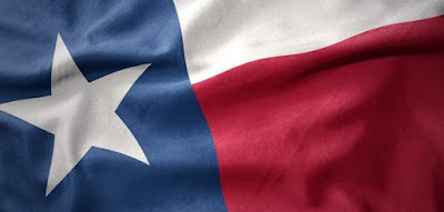 Q 5. Texas is the second largest state in the United States, both by population and area.