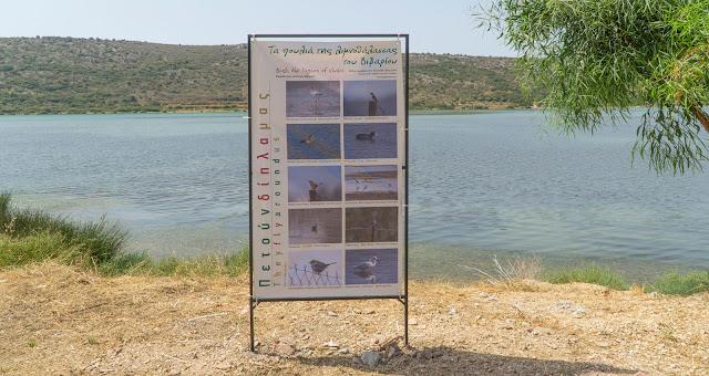 Αργολίδα: Πινακίδες με την ορνιθοπανίδα στη λιμνοθάλασσα του Βιβαρίου