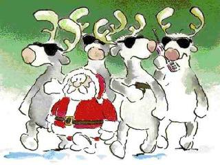 smiješna božićna čestitka 320x240 besplatne slike za mobitele: Smiješna Božićna čestitka za  smiješna božićna čestitka