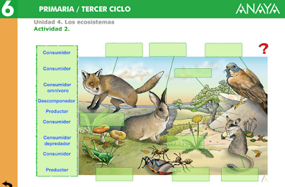 herreraalcausa.es/Recursosdidacticos/SEXTO/datos/02_Cono/datos/05rdi/04/02.htm