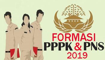 Persyaratan untuk mendaftar CPNS dan PPPK tahun 2019