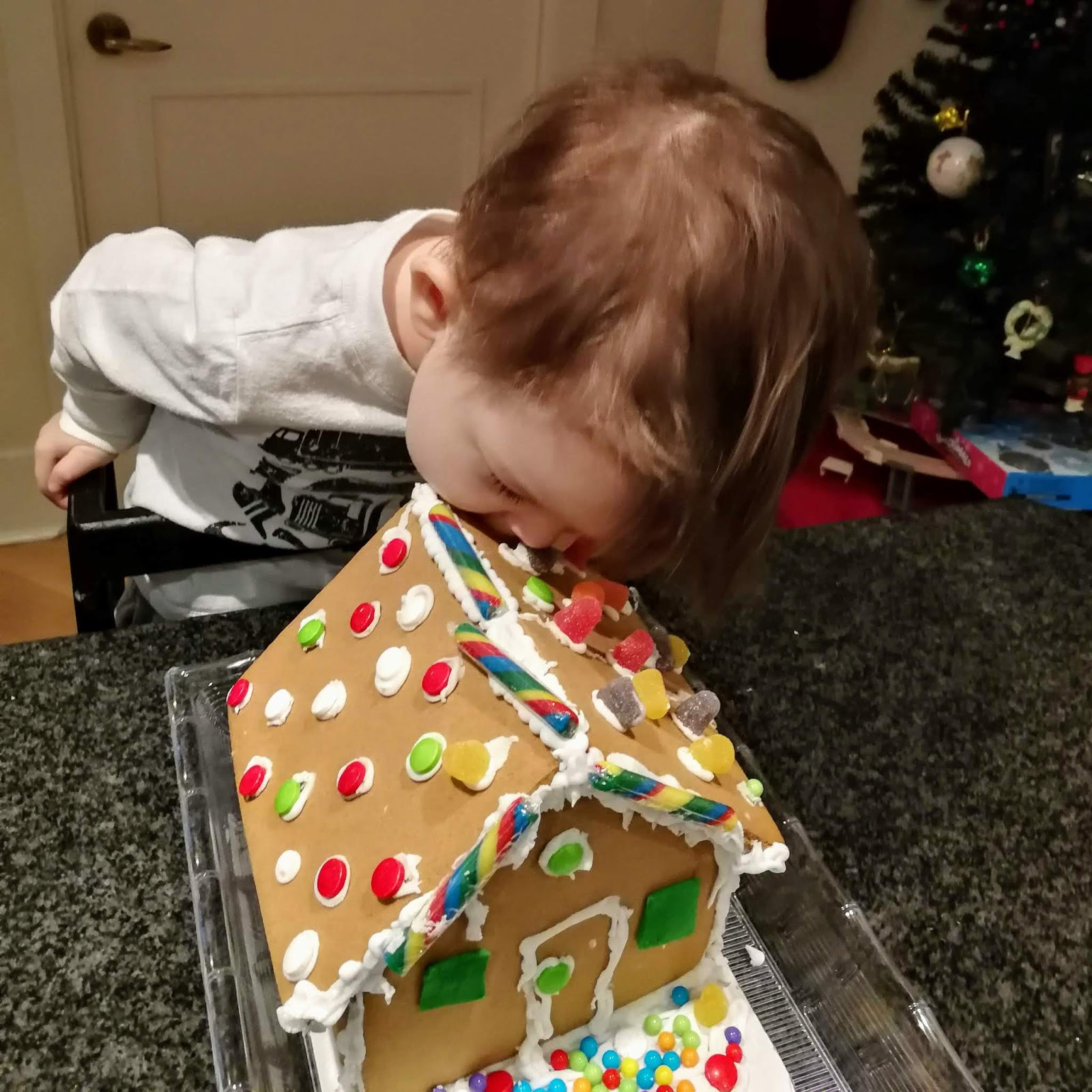 Holiday Baking with Kids, Gingerbread House