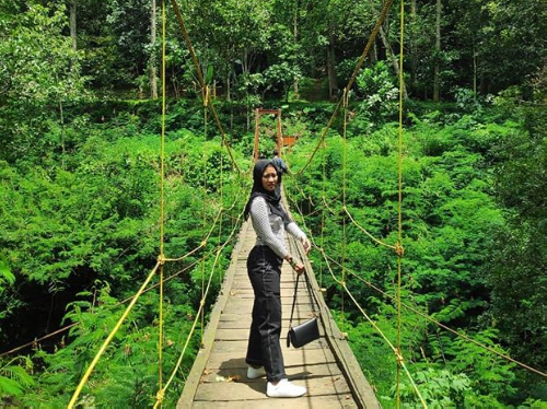 Taman Hutan Raya di Bandung