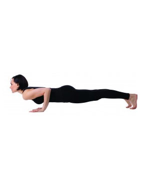 four limbed staff pose chaturanga dandasana  yoga asana