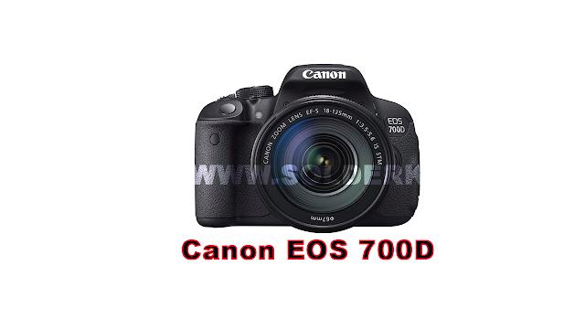4 Rekomendasi Kamera DSLR Untuk Fotografer Pemula