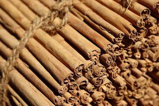 cinnamon harvest, amuura, ceylon cinnamon