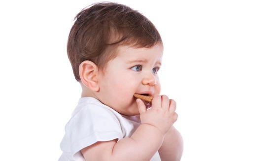 Tips Memilih Biskuit untuk Bayi 6 Bulan
