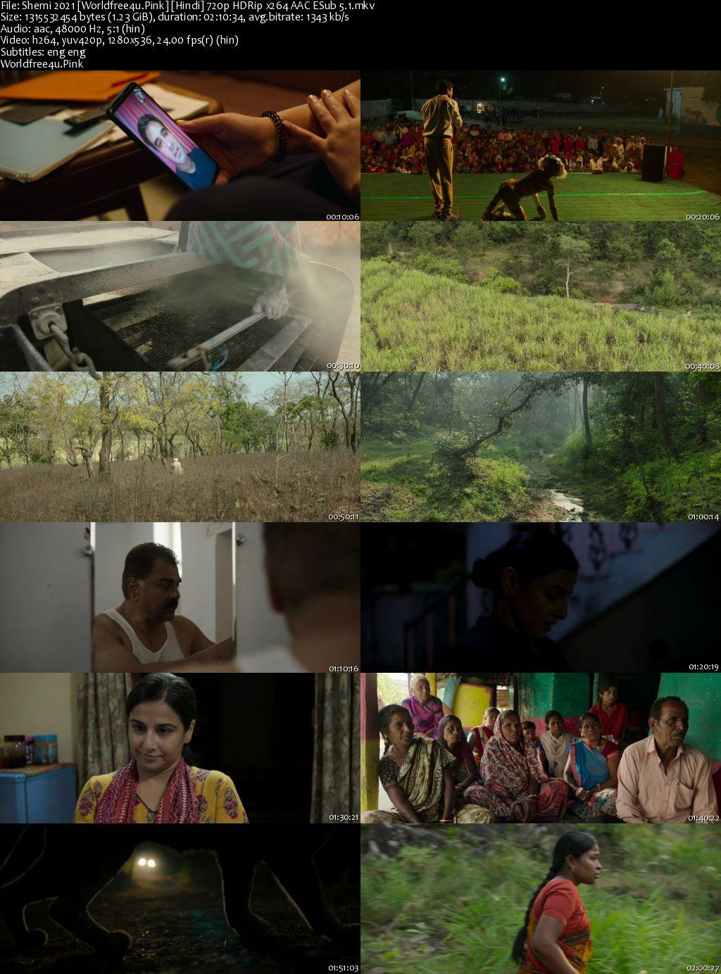 Sherni 2021 Hindi HDRip 720p ESub