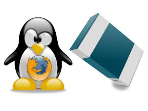 Pinguim Tux com símbolo do firefox e uma caixa no formato 3D