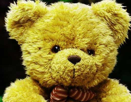 Teddy%2BBear%2BImages%2BPics%2BHD35