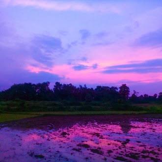 Colour   naturel colour