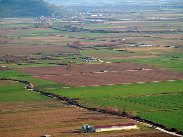 Κρατάει τιμή η αγροτική γη στην Πελοπόννησο - Σε ποια χώρα της Ευρώπης είναι πιο ακριβή